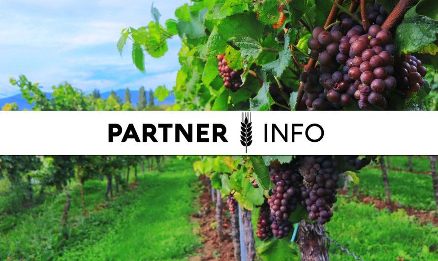 Piacszervezési intézkedések a szőlőértékesítésben – 2021