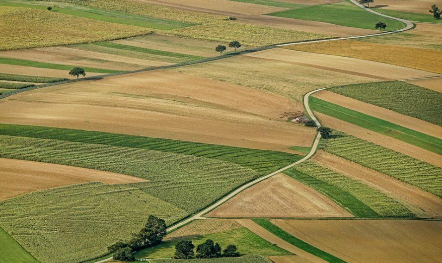 Lezárult a 3 hektár alatti földek értékesítése