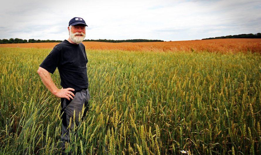 Jön a nagy agráradózási reform: komoly változásokra készülhetnek az őstermelők