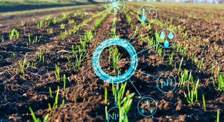 Megvan, hogyan fejlesztené és egyszerűsítené a Közös Agrárpolitikát az EU